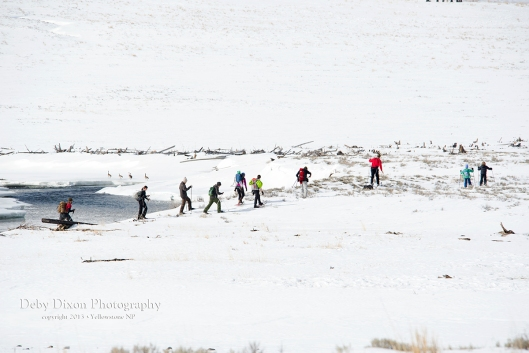 skiing759004